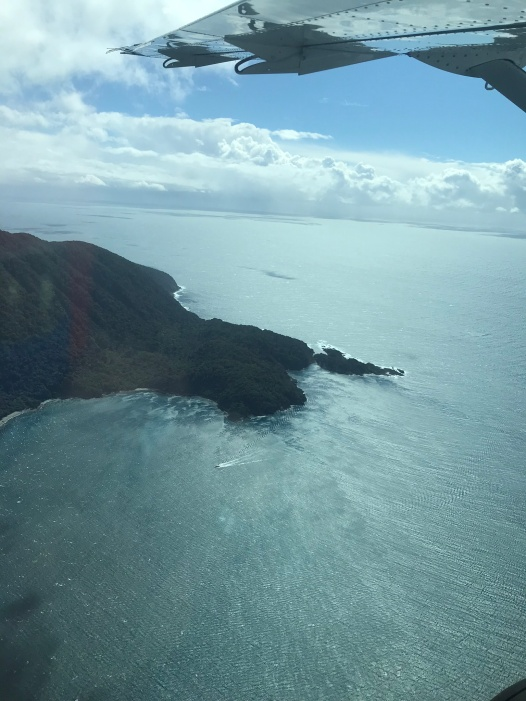 Looking south to the Tasman Sea.